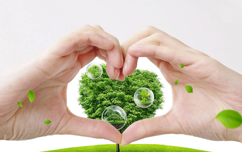 Environmentally-friendly-products-and-consumers